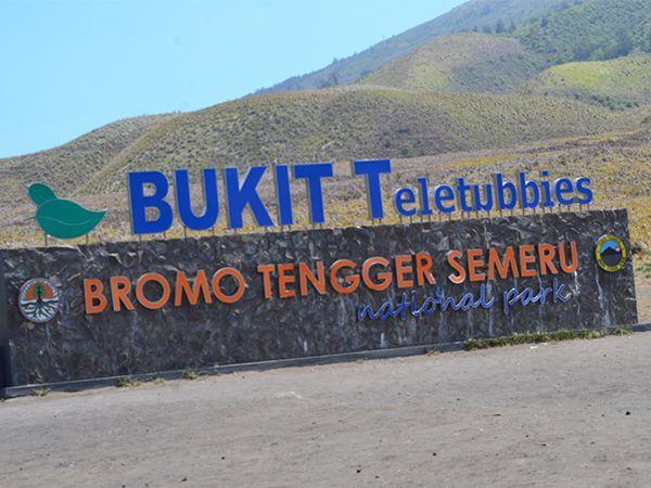 Bukit Teletubbies Gunung Bromo