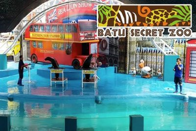 secret zoo compressor