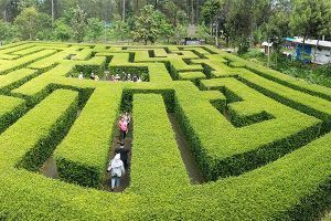 Paket Honeymoon Malang Batu 2 Hari 1 Malam - Taman Labirin