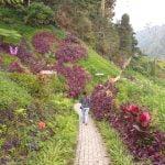 Tempat Wisata di Malang - Air Terjun Coban Pelangi
