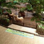 Tempat Wisata di Malang - Jawa Timur Park 2