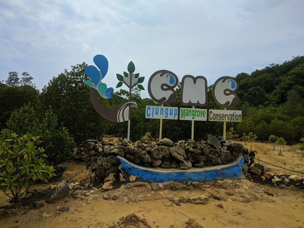 Kawasan Mangrove Pantai CMC