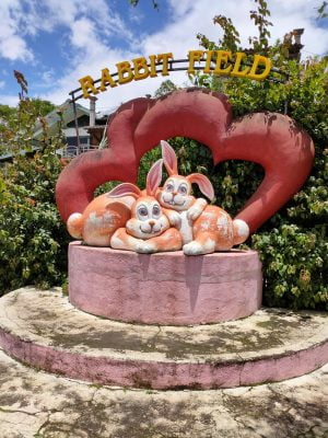 Info wisata dan wahana di Taman Kelinci image 10