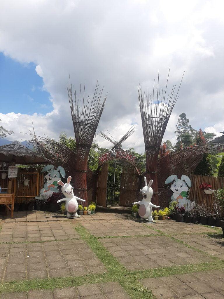 Info wisata dan wahana di Taman Kelinci image 2