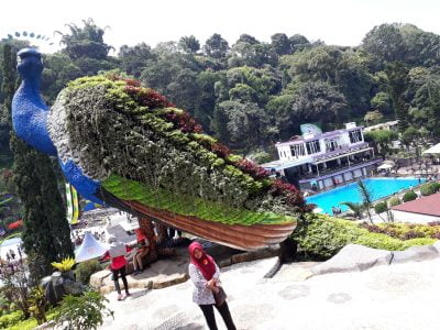 Kolam Renang Selecta di Malang