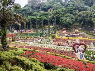 Taman Bunga di Selecta
