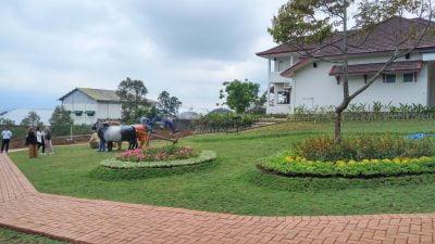 Info wisata dan wahana di Petik Apel Kusuma Agrowisata image 16