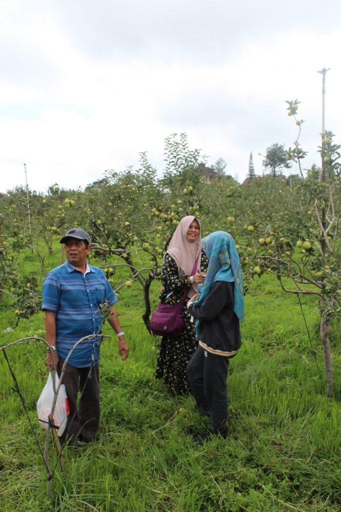 Info wisata dan wahana di Petik Apel Kusuma Agrowisata image 8