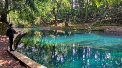 Info wisata dan wahana di Sumber Jenon Malang image 17